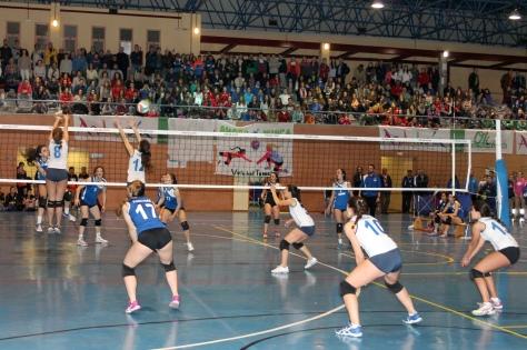 Campeonato de Andalucía de Voley Juvenil Feminino_Tomares 23_03_2015.jpg