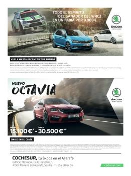 cochesur.com